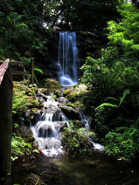7 Waterfalls You Had No Idea Existed In Florida