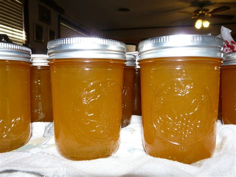 It Happens in a Flash: Canning and Satsuma Jelly