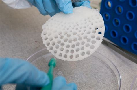 Researchers use silk to cultivate organ tissues in the lab