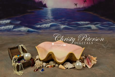 Clam Shell Prop with Treasure   Christy Peterson